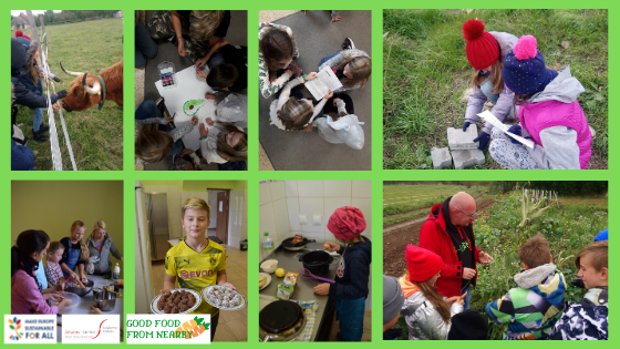 Poland: Peer to peer education for more sustainable food – it's worth it/it works!